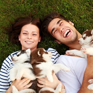 family-puppies